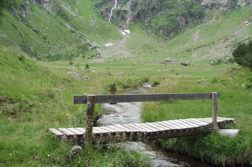 Naturbestattung in den Bergen